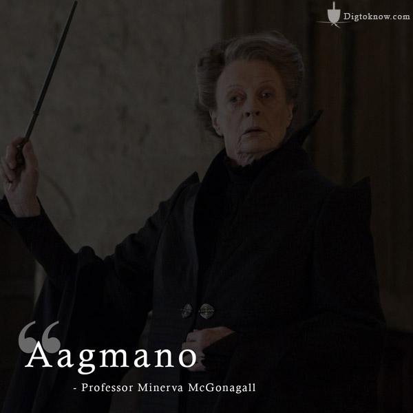 Mcgonagall Accio Spell