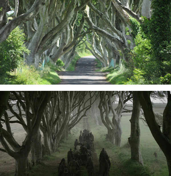 Game of Thrones - The King's Road (Dark Hedges)