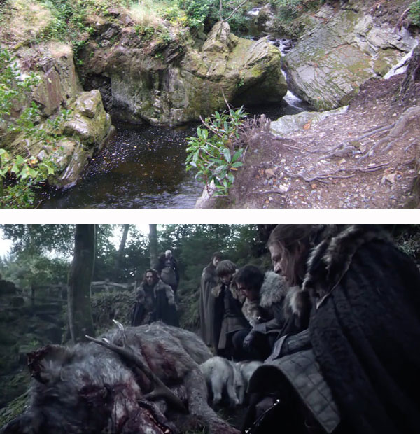 GOT - Wolfswood (Tollymore Forest Park)
