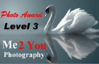 Level 3 Photo Award