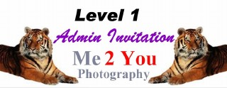 Level 1 Admin Invitation