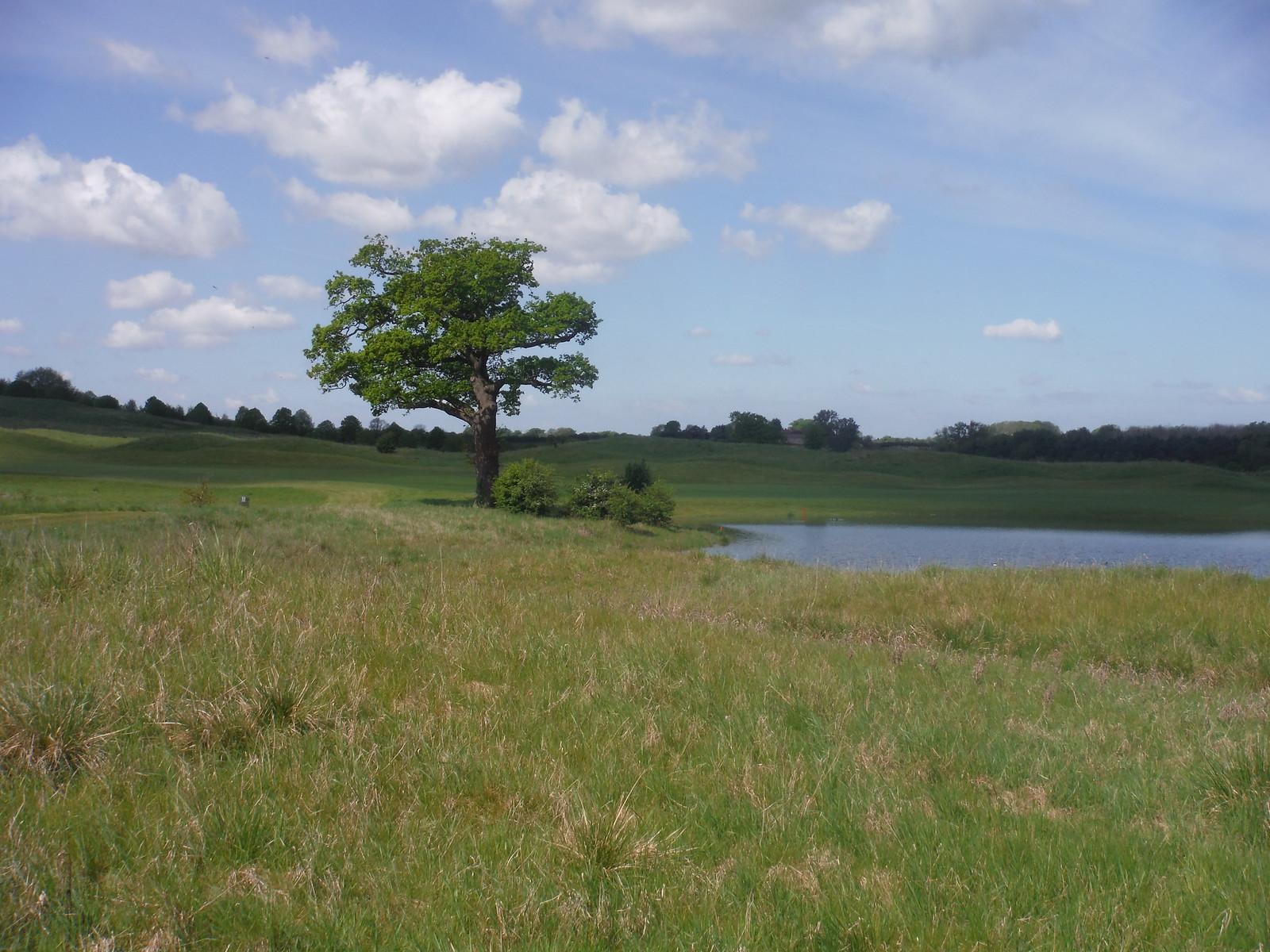 Oxfordshire Golf Club (II) SWC Walk 190 - Thame Circular