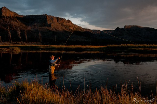 Fly fishing in yellowstone flickr photo sharing for Yellowstone fly fishing