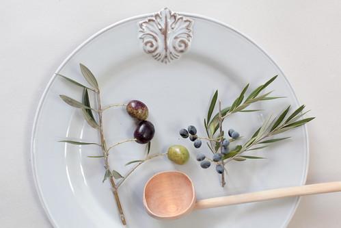A colheita das azeitonas
