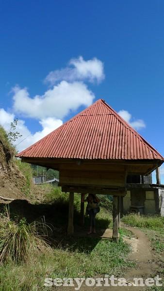 Traditional Ifugao house on the way