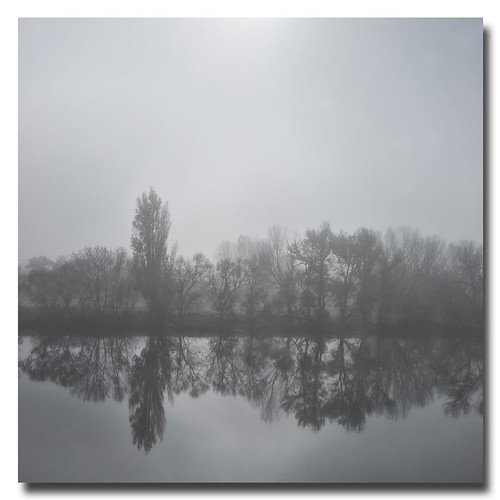 Mañana de niebla... by Andrés Ñíguez