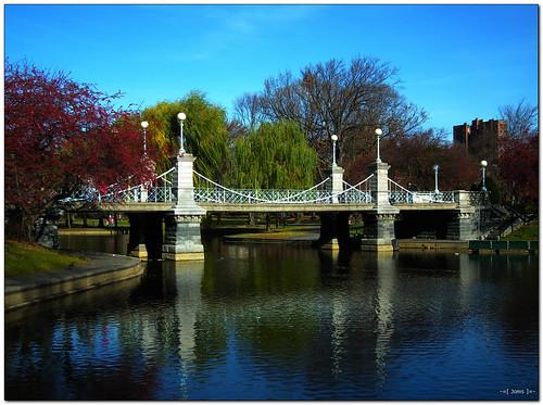 park bridge autumn reflection nature landscape pond sooc hs10 hs11