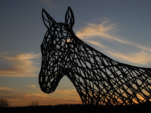 sunset horses silhouette connecticut brookfield