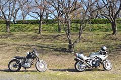 SR500 & TRX850