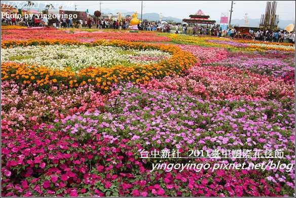 2011臺中國際花毯節20111126_I2119