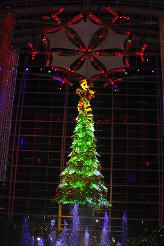 Christmas tree Gaylord ICE 2011