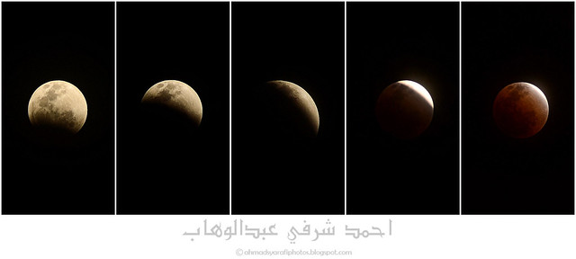 Total Lunar Eclipse 2011