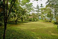 Lawn at Mirador
