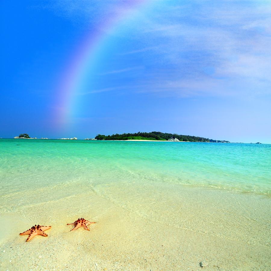 Stars under The Rainbow