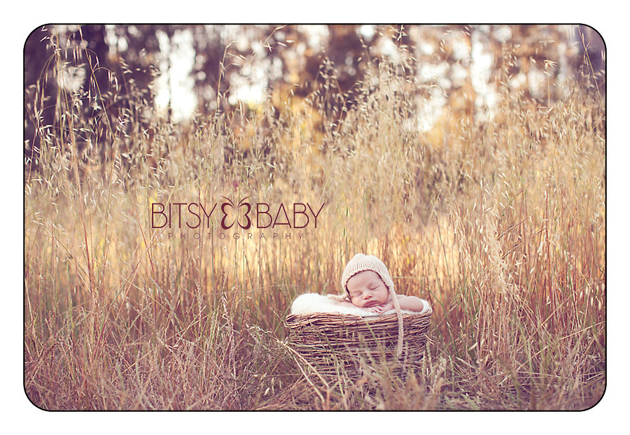 baby photography workshop