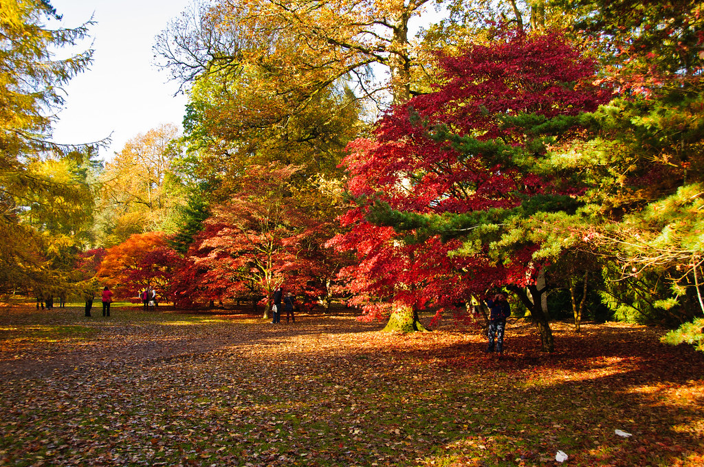 Best Places to Enjoy the Autumn Landscapes