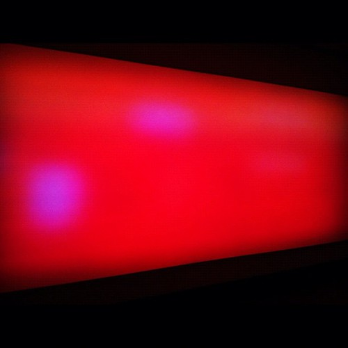 "Leo Villareal, ""Field."" #moma #art #museum by MoMA The Museum of Modern Art"