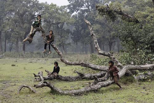 無料写真素材, 人物, 子供  女の子, 人物  樹木, 人物  四人, ネパール人
