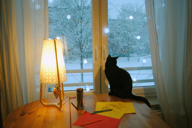 advent snow and cat