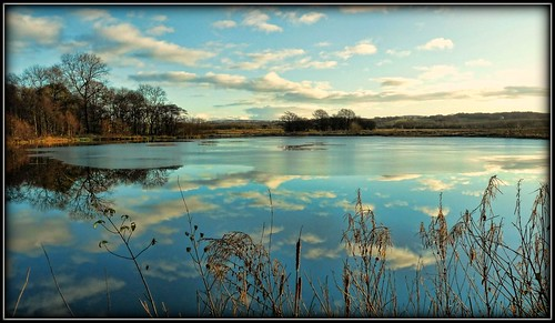 uk winter sky sun reflection ice nature water clouds landscape frozen frost waterscape brockholes platinumheartaward artcityart