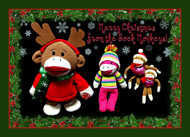 Merry Christmas from the Monkeys!