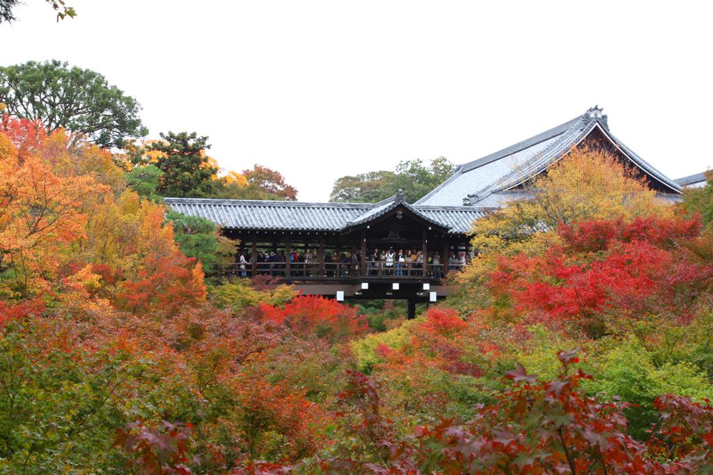 Kyoto Rakunan Guide (1)