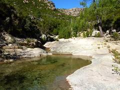 Remontée du Mela : vasques vers la confluence Peralzone