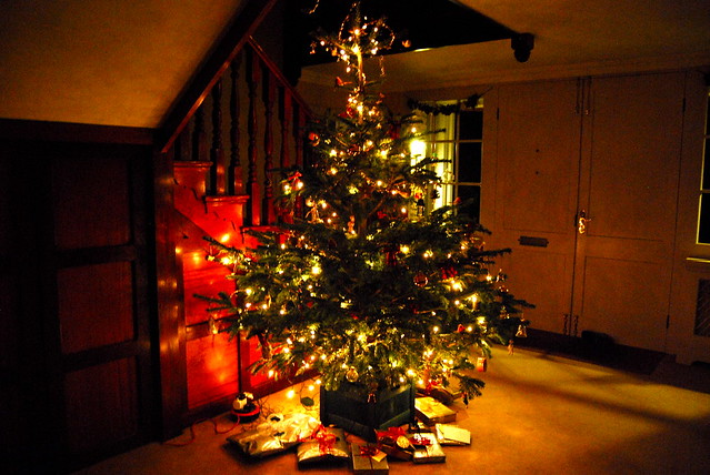 Rachel Phipps Happy Christmas A Honey And Mustard