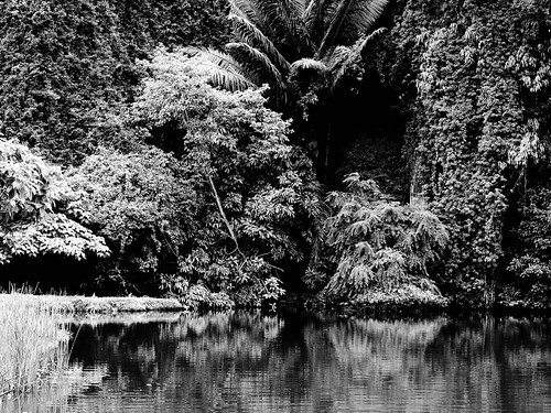 IMG_0110 Gunung Lang in black and white, 黑白崑崙浪