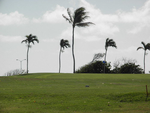 Hawaii Kai Golf Course 151
