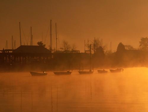morning sun fog boats harbour maryland filter boatyard solomons konicaminoltadimagez6 mysunglasses digitography