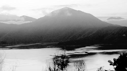 Nova Zelândia by fernanda garrido