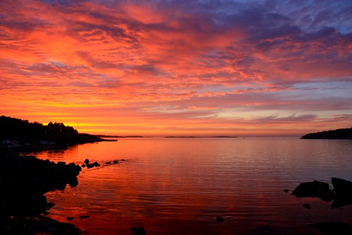 ocean trees light sunset sky nature water clouds landscape flora europe shadows view sweden silhouettes sverige kungsbacka halland särö jönköpingslän jönköpings canonxsi canon450dxsi runintherain