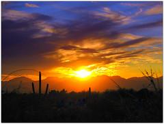 Tucson Arizona 2012