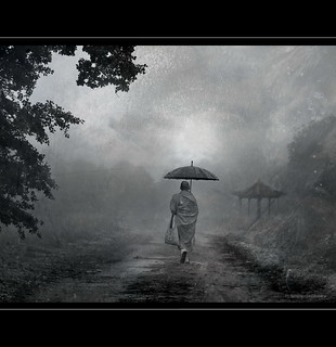 Path in Mist
