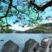 Kandy Lake- Cloud Wall