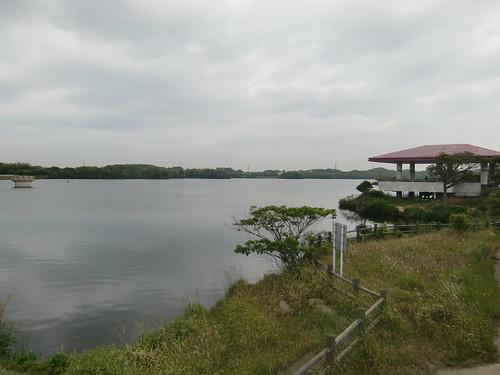 頓田貯水池の西端