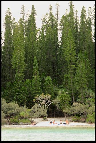 piscina naturale isola dei pini nuova caledonia