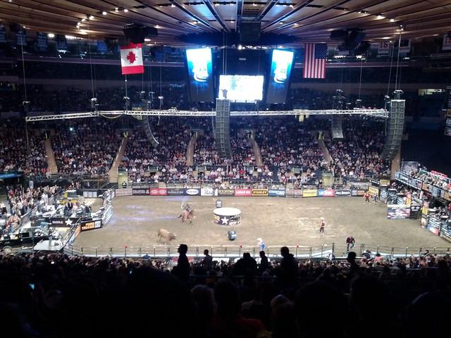 Madison Square Garden Professional Bull Riding Flickr Photo Sharing