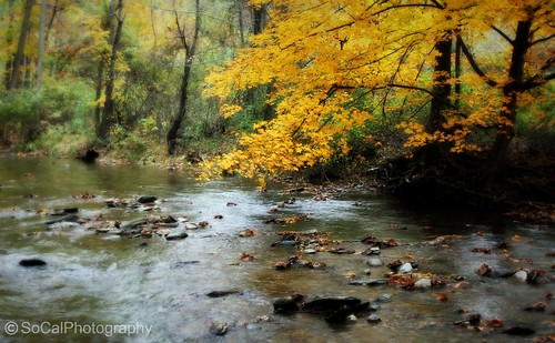 autumn trees usa fall nature water beauty leaves yellow forest reflections river landscape woods rocks colorful stream natural pennsylvania stones seasonal scenic rocky explore pa picturesque tress lehighvalley waterscape schnecksville explored howardsgallery