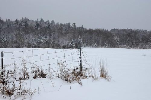 winter ski_266