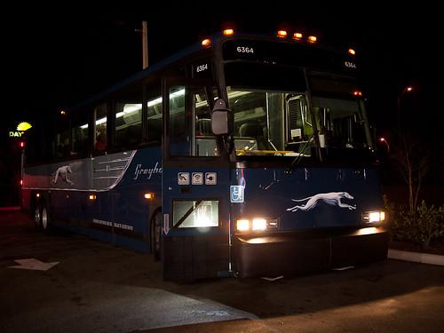 3am Bus Stop