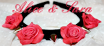 red roses and spikes headband