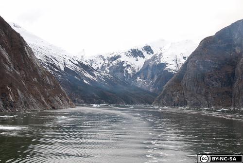 20110505-Alaska2011-D2-DSC_5221.jpg