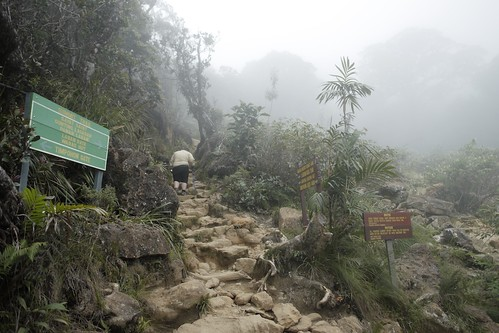 Fat guy mount kinabalu climb!