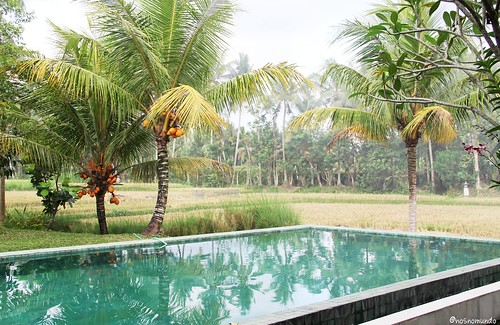 Hotel Villa Sabandari - Ubud
