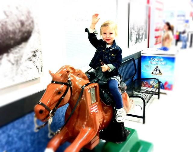 Zo - Mall Horse