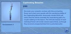 Captivating Beauties