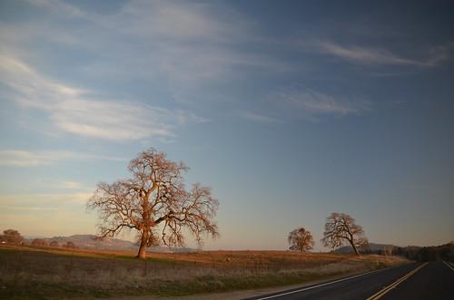 california ca nationalpark yosemite yosemitenationalpark triptoyosemite usnationalparkservice