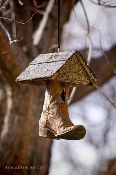 redneck birdhouse flickr photo sharing. Black Bedroom Furniture Sets. Home Design Ideas